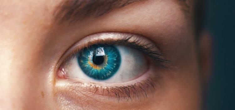 Eye Movement Integration (EMI)